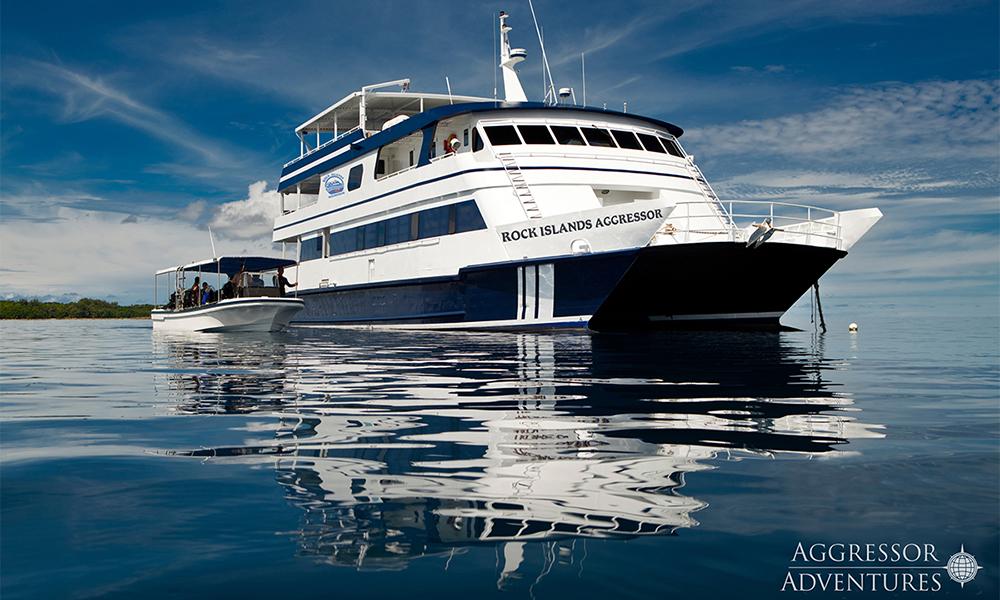 Dykning och liveaboard i Palau